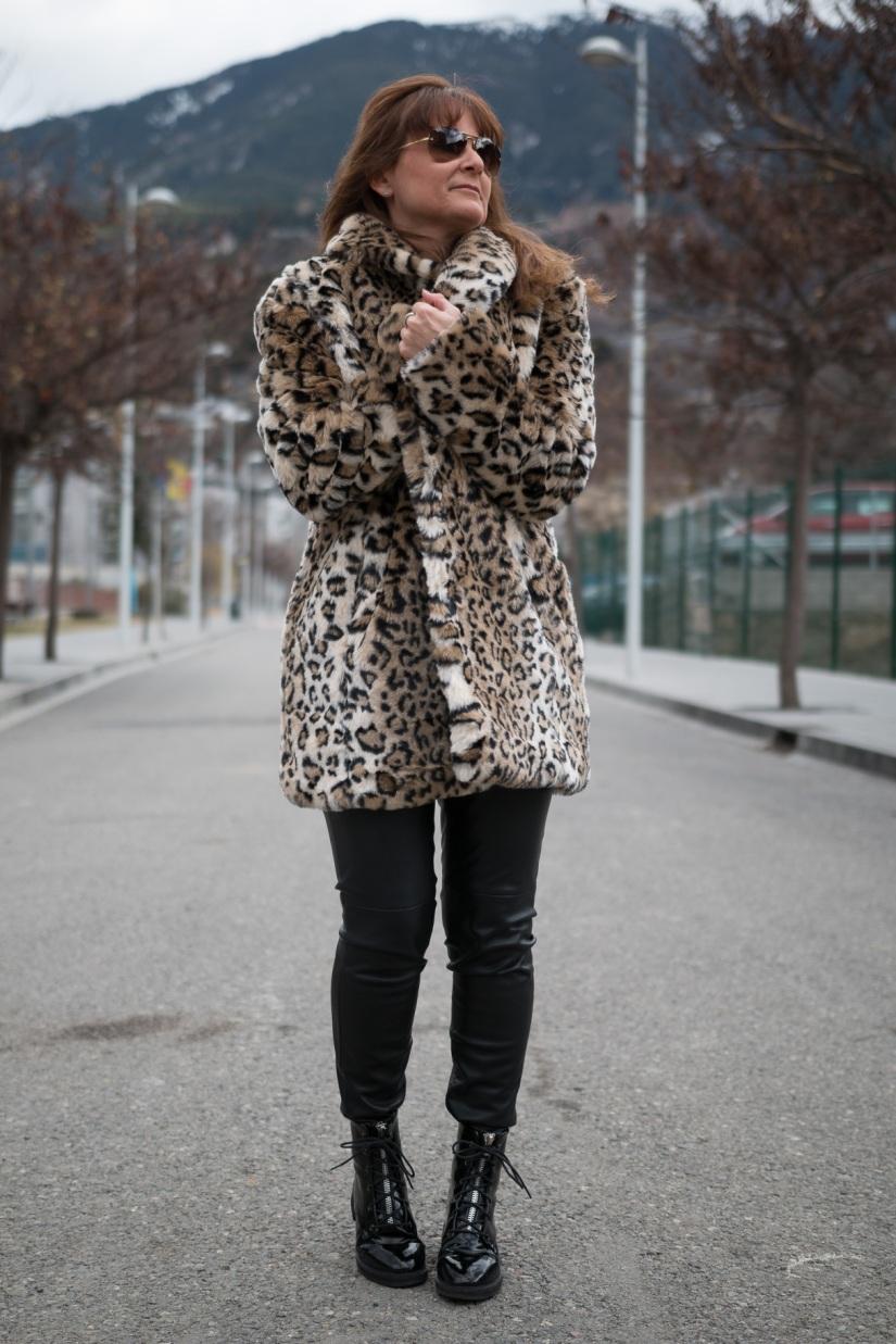 Leopardo-10