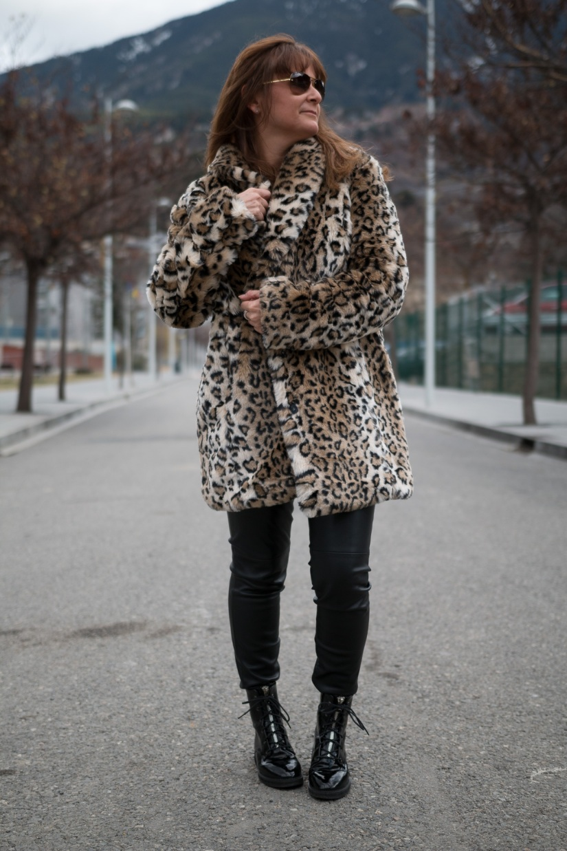 Leopardo-11