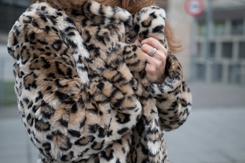 Leopardo-12