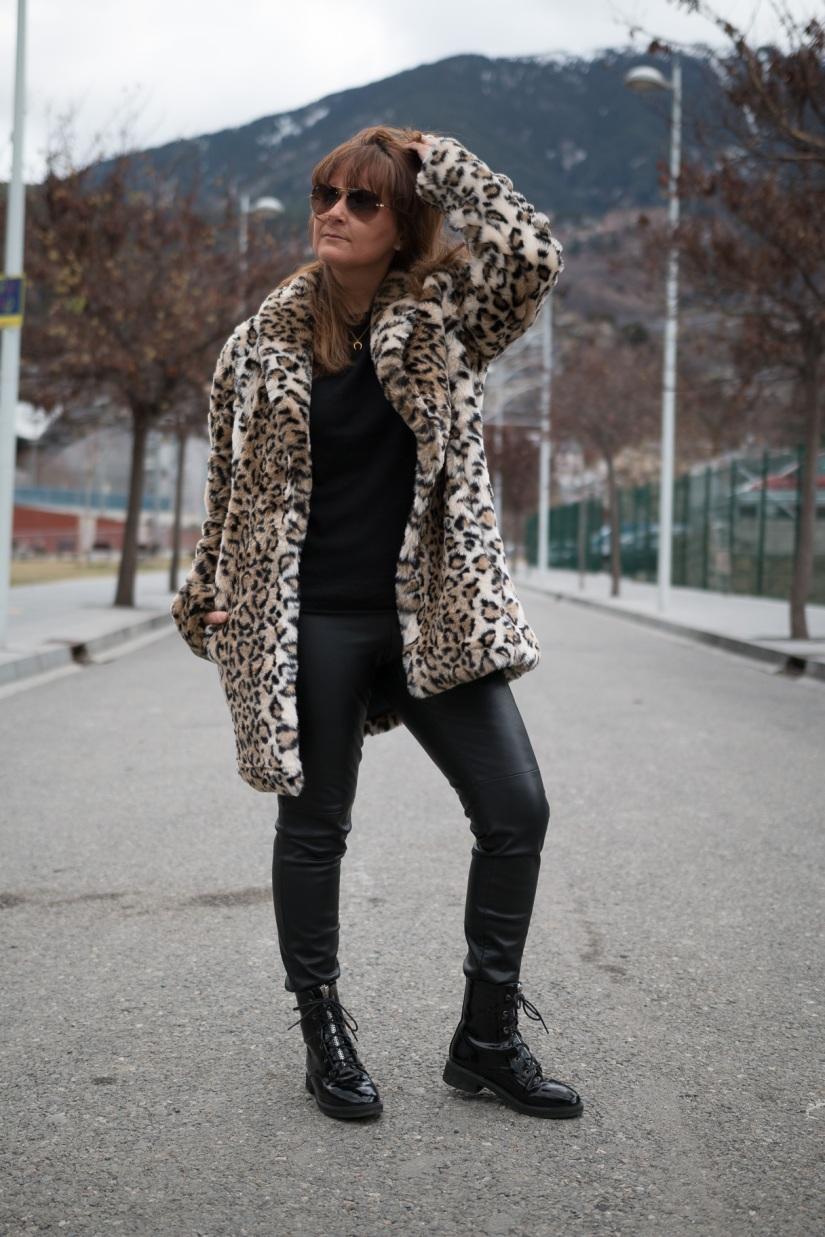 Leopardo-6